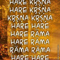 Hare Krishna Maha Mantra 024