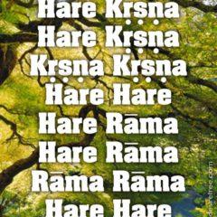 Hare Krishna Maha Mantra 025