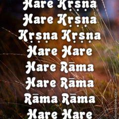 Hare Krishna Maha Mantra 027