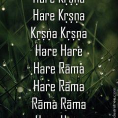 Hare Krishna Maha Mantra 030