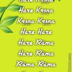Hare Krishna Maha Mantra 031
