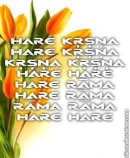 Hare Krishna Maha Mantra in Portuguese 016