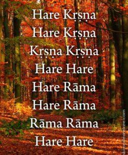 Hare Krishna Maha Mantra in Portuguese 024