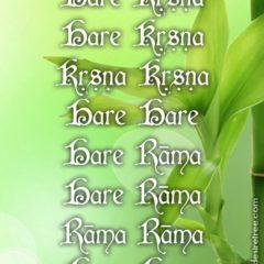 Hare Krishna Maha Mantra 095