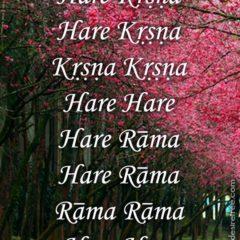 Hare Krishna Maha Mantra in Portuguese 022