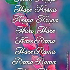 Hare Krishna Maha Mantra in Portuguese 028