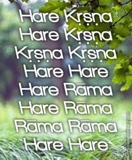 Hare Krishna Maha Mantra in Portuguese 029