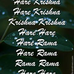 Hare Krishna Maha Mantra 216
