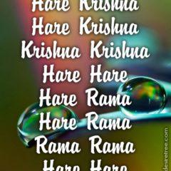Hare Krishna Maha Mantra 219