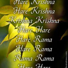 Hare Krishna Maha Mantra 227