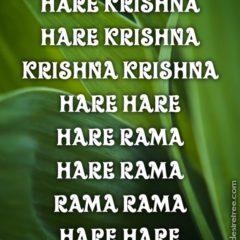Hare Krishna Maha Mantra 228