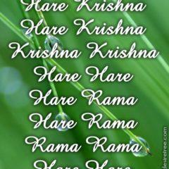 Hare Krishna Maha Mantra 238