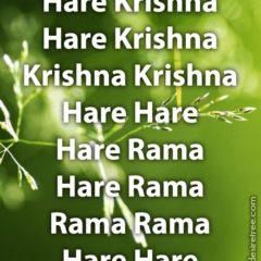 Hare Krishna Maha Mantra 241