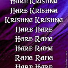 Hare Krishna Maha Mantra 286