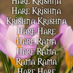 Hare Krishna Maha Mantra 287