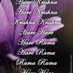 Hare Krishna Maha Mantra 288