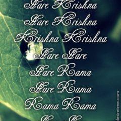 Hare Krishna Maha Mantra 289