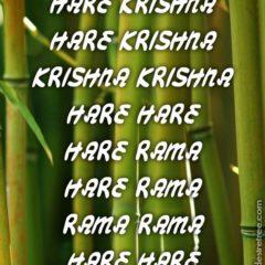 Hare Krishna Maha Mantra 341