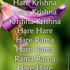 Hare Krishna Maha Mantra 350