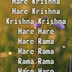 Hare Krishna Maha Mantra 359