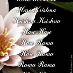 Hare Krishna Maha Mantra 366
