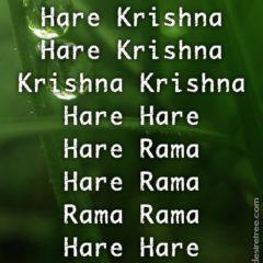 Hare Krishna Maha Mantra 419