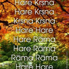 Hare Krishna Maha Mantra 472