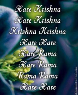 Hare Krishna Maha Mantra in Spanish 028