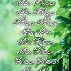 Hare Krishna Maha Mantra in Spanish 023