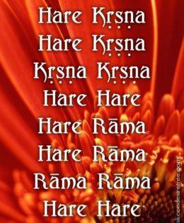 Hare Krishna Maha Mantra in Spanish 022