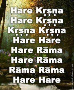 Hare Krishna Maha Mantra in Spanish 014