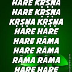 Hare Krishna Maha Mantra 556
