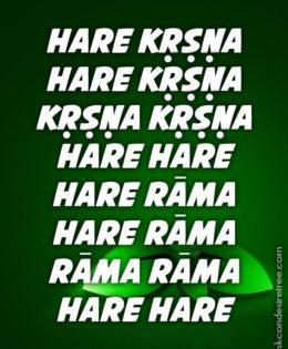 Hare Krishna Maha Mantra in Spanish 013