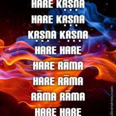 Hare Krishna Maha Mantra 565
