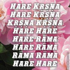 Hare Krishna Maha Mantra 566
