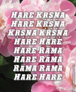 Hare Krishna Maha Mantra in Spanish 008