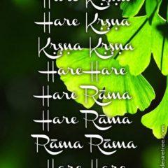 Hare Krishna Maha Mantra 568