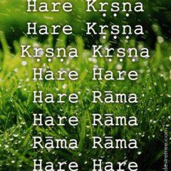 Hare Krishna Maha Mantra in Spanish 005