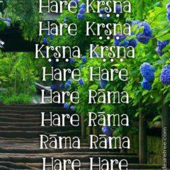 Hare Krishna Maha Mantra 578