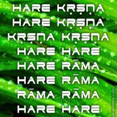 Hare Krishna Maha Mantra 581