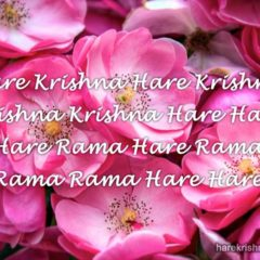 Hare Krishna Maha Mantra in Portuguese 017