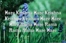 Hare Krishna Maha Mantra in Portuguese 030