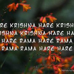 Hare Krishna Maha Mantra 097
