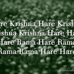 Hare Krishna Maha Mantra in French 009