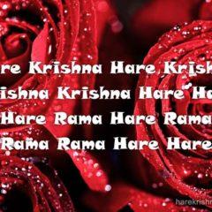 Hare Krishna Maha Mantra 150