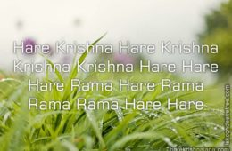 Hare Krishna Maha Mantra in French 028