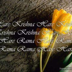 Hare Krishna Maha Mantra 166