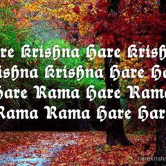 Hare Krishna Maha Mantra in French 029