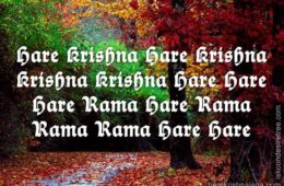 Hare Krishna Maha Mantra in French 029