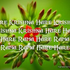 Hare Krishna Maha Mantra in French 030